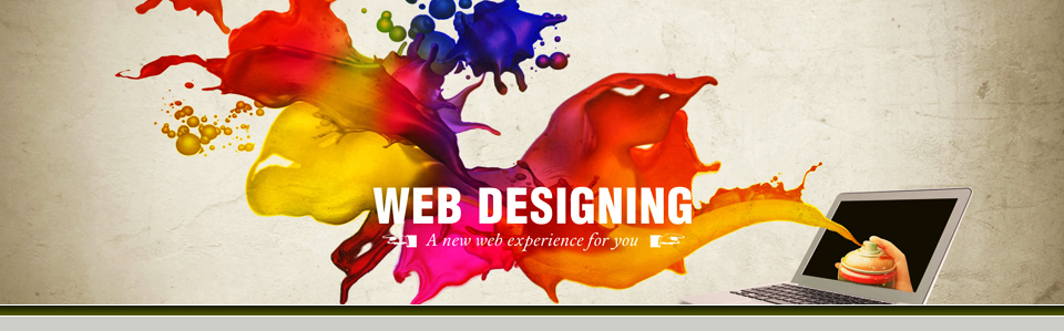 Web Development Services and CMS